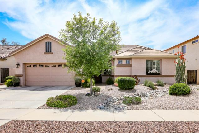 10317 W Edgemont Drive, Avondale, AZ 85392 (MLS #5915131) :: Devor Real Estate Associates