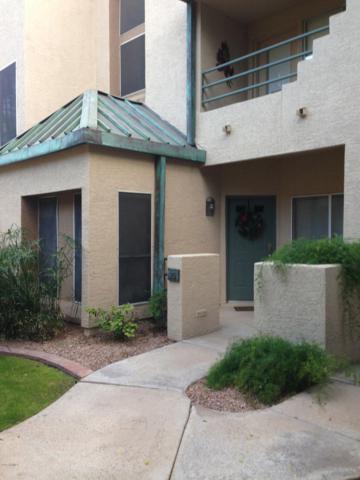 101 N 7TH Street #175, Phoenix, AZ 85034 (MLS #5915164) :: RE/MAX Excalibur