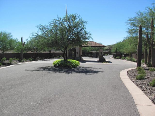 6537 W Buckhorn Trail, Phoenix, AZ 85083 (MLS #5915173) :: CC & Co. Real Estate Team