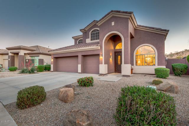 18425 W Sweet Acacia Drive, Goodyear, AZ 85338 (#5915174) :: Gateway Partners   Realty Executives Tucson Elite