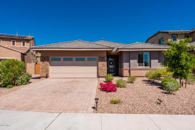 12944 W Cassia Trail, Peoria, AZ 85383 (MLS #5915186) :: Keller Williams Realty Phoenix