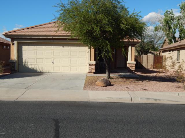 16538 W Statler Street, Surprise, AZ 85388 (MLS #5915189) :: Devor Real Estate Associates