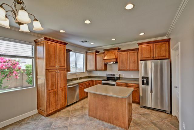 14751 N 174TH Avenue, Surprise, AZ 85388 (MLS #5915196) :: Devor Real Estate Associates