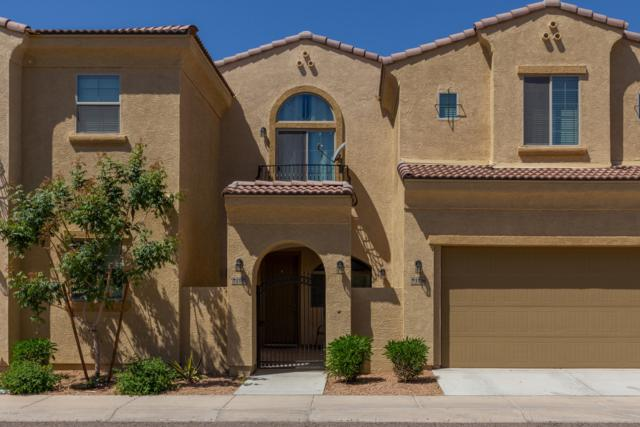 1367 S Country Club Drive #1137, Mesa, AZ 85210 (MLS #5915208) :: Team Wilson Real Estate
