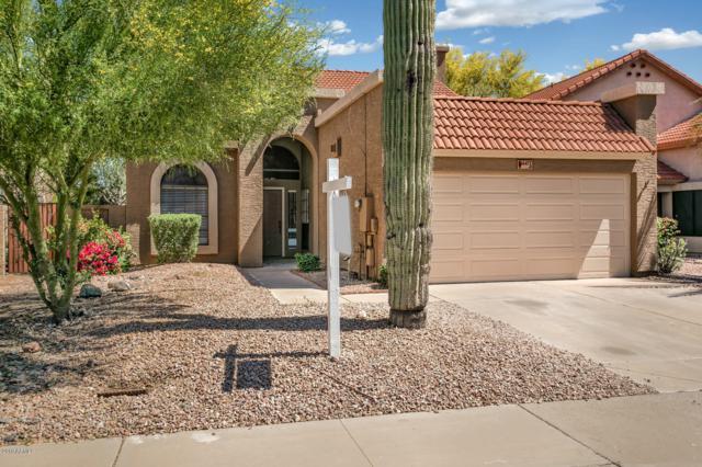 14477 S Cholla Canyon Drive, Phoenix, AZ 85044 (MLS #5915215) :: Brett Tanner Home Selling Team