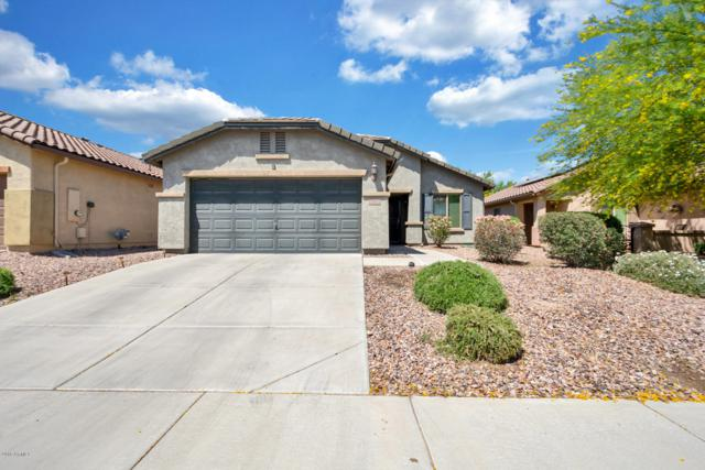 8076 W Sonoma Way, Florence, AZ 85132 (MLS #5915228) :: Yost Realty Group at RE/MAX Casa Grande