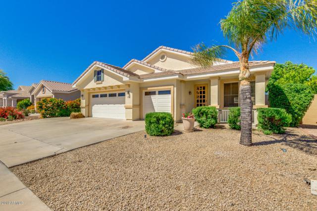 7026 W Irma Lane, Glendale, AZ 85308 (#5915234) :: Gateway Partners | Realty Executives Tucson Elite