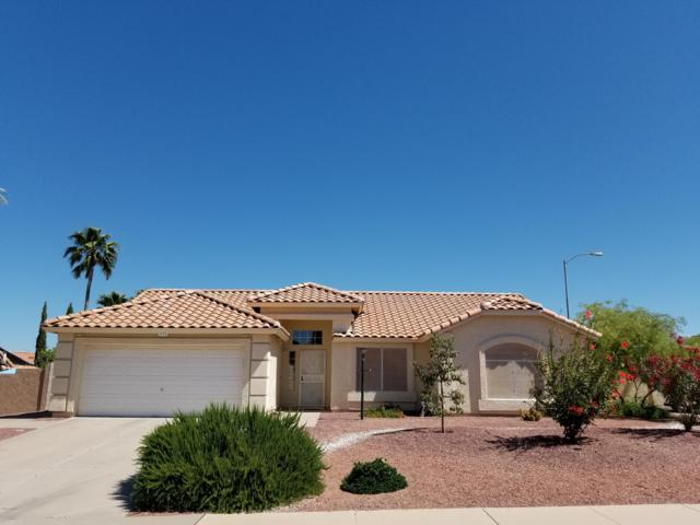 6628 E Presidio Street, Mesa, AZ 85215 (MLS #5915245) :: Riddle Realty