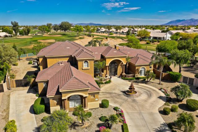 13441 Fairway Loop S, Goodyear, AZ 85395 (#5915250) :: Gateway Partners   Realty Executives Tucson Elite