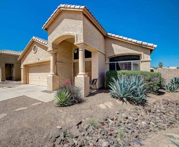 4756 E Bighorn Avenue, Phoenix, AZ 85044 (MLS #5915283) :: Yost Realty Group at RE/MAX Casa Grande