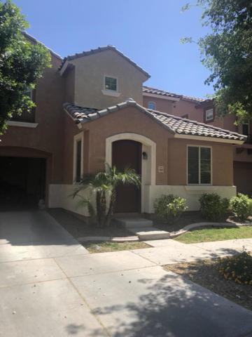 7829 W Pipestone Place, Phoenix, AZ 85035 (#5915299) :: Gateway Partners | Realty Executives Tucson Elite