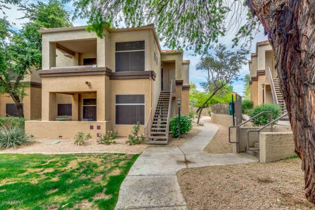 11375 E Sahuaro Drive #1089, Scottsdale, AZ 85259 (#5915302) :: Gateway Partners | Realty Executives Tucson Elite
