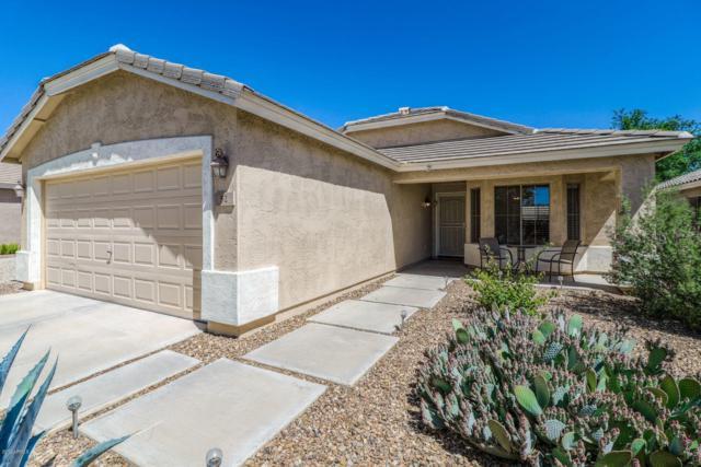 52 E Lupine Place, San Tan Valley, AZ 85143 (MLS #5915322) :: The Pete Dijkstra Team