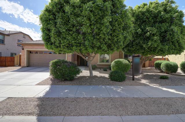 1292 S 167TH Drive, Goodyear, AZ 85338 (MLS #5915327) :: Yost Realty Group at RE/MAX Casa Grande