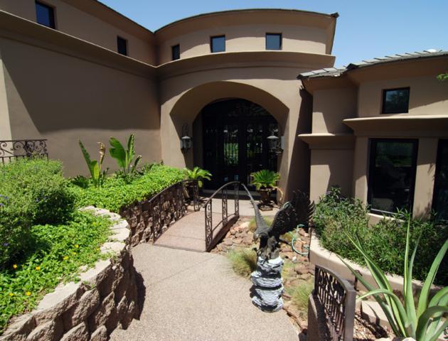 12820 N 17TH Place, Phoenix, AZ 85022 (#5915329) :: Gateway Partners | Realty Executives Tucson Elite