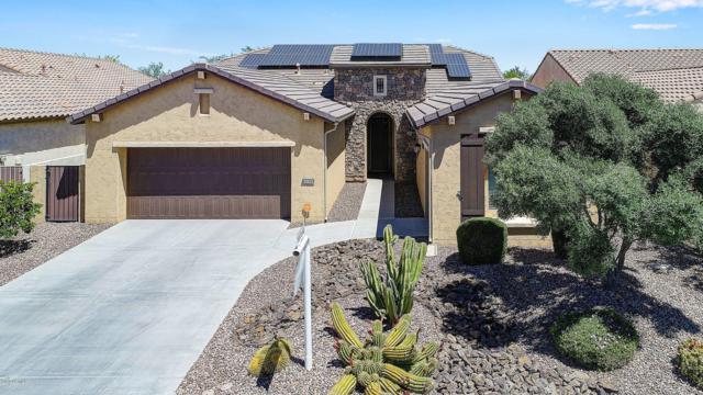 16390 W Sheila Lane, Goodyear, AZ 85395 (#5915331) :: Gateway Partners   Realty Executives Tucson Elite