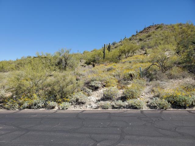 35029 N El Sendero Road, Cave Creek, AZ 85331 (MLS #5915332) :: The Daniel Montez Real Estate Group
