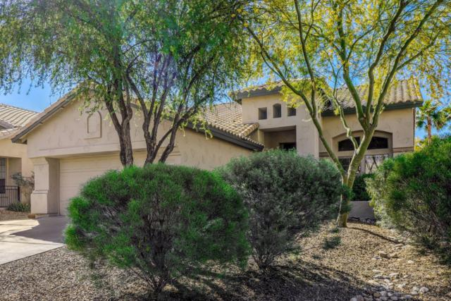 6507 E Star Valley Street, Mesa, AZ 85215 (#5915338) :: Gateway Partners | Realty Executives Tucson Elite