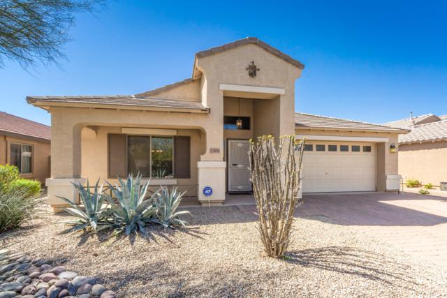 1369 E Racine Drive, Casa Grande, AZ 85122 (MLS #5915343) :: Yost Realty Group at RE/MAX Casa Grande