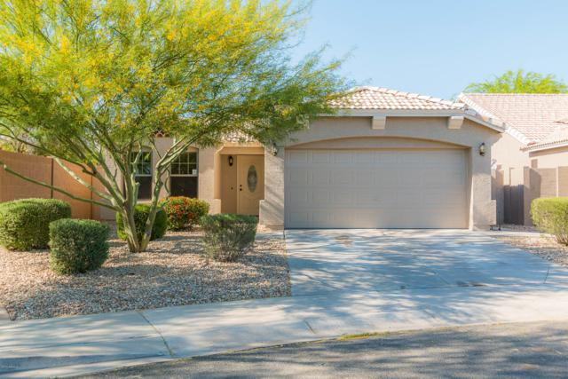 11792 W Joblanca Road, Avondale, AZ 85323 (MLS #5915376) :: Kortright Group - West USA Realty