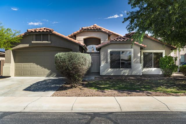 43553 W Courtney Drive, Maricopa, AZ 85138 (MLS #5915390) :: The Pete Dijkstra Team