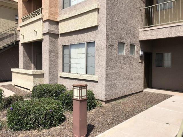 1941 S Pierpont Drive #1134, Mesa, AZ 85206 (MLS #5915393) :: The Wehner Group