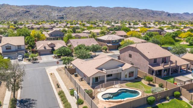 1814 E Fawn Drive, Phoenix, AZ 85042 (MLS #5915400) :: Devor Real Estate Associates
