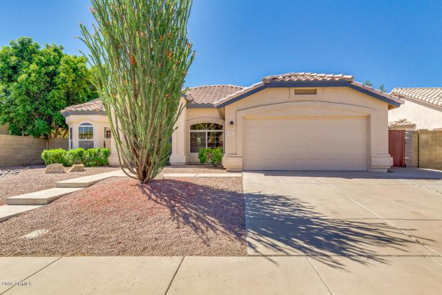 1541 W Cindy Street, Chandler, AZ 85224 (MLS #5915420) :: The C4 Group