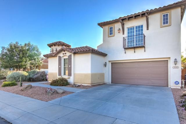 3096 S Halsted Drive, Chandler, AZ 85286 (MLS #5915462) :: The Pete Dijkstra Team