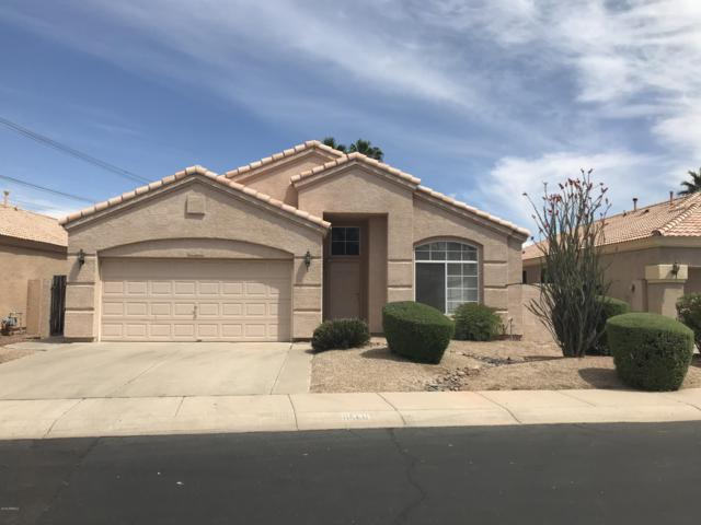 6560 W Dublin Court, Chandler, AZ 85226 (MLS #5915476) :: The C4 Group