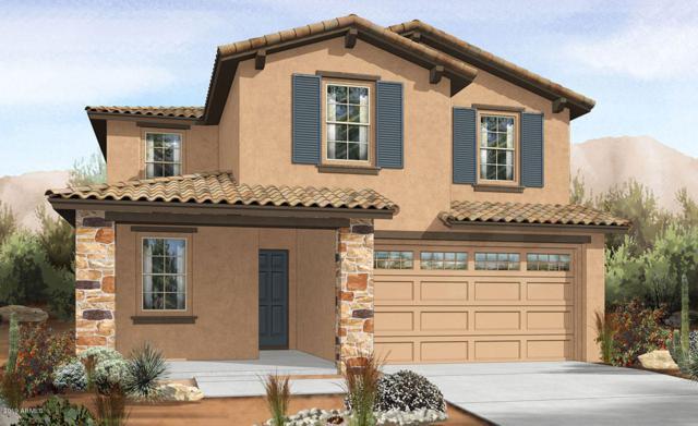 29906 N 115TH Glen, Peoria, AZ 85383 (MLS #5915495) :: The Results Group
