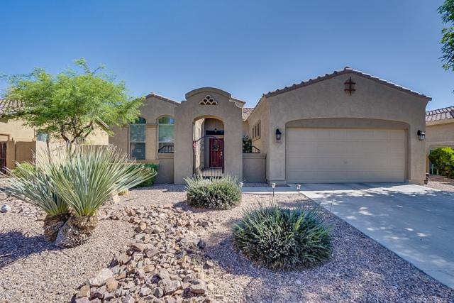 18461 E Celtic Manor Drive, Queen Creek, AZ 85142 (MLS #5915508) :: The Pete Dijkstra Team