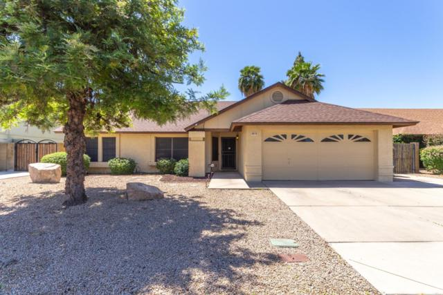 4313 E Greenway Lane, Phoenix, AZ 85032 (MLS #5915527) :: The Ford Team