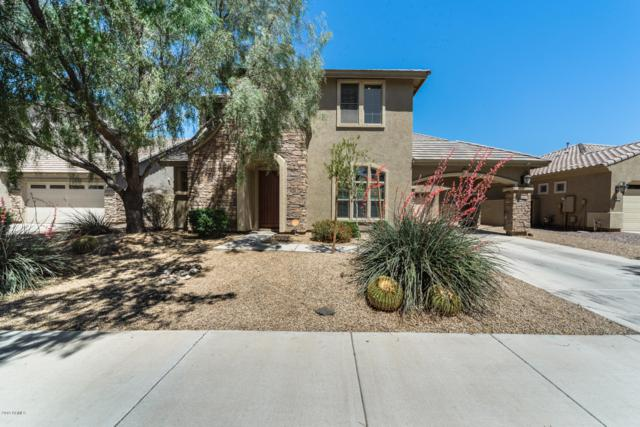 20368 E Avenida Del Valle, Queen Creek, AZ 85142 (MLS #5915561) :: The Pete Dijkstra Team