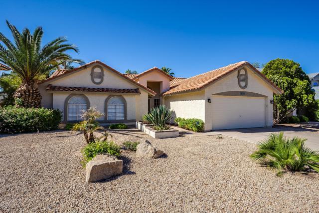 3519 E Tonto Lane, Phoenix, AZ 85050 (MLS #5915588) :: Occasio Realty