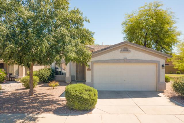 30259 N Sunray Drive, San Tan Valley, AZ 85143 (MLS #5915620) :: The Pete Dijkstra Team