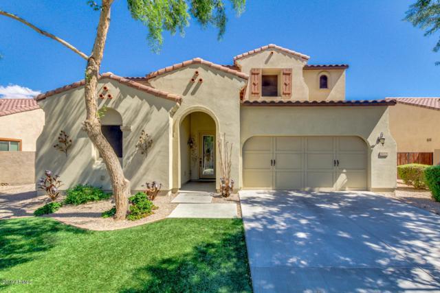 4201 S Granite Drive, Chandler, AZ 85249 (MLS #5915635) :: The Pete Dijkstra Team