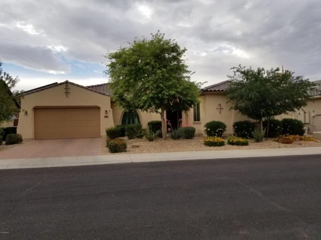 15868 W Cypress Street, Goodyear, AZ 85395 (MLS #5915656) :: Occasio Realty