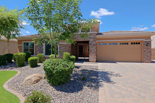 3552 E Cassia Lane, Gilbert, AZ 85298 (MLS #5915702) :: The Pete Dijkstra Team