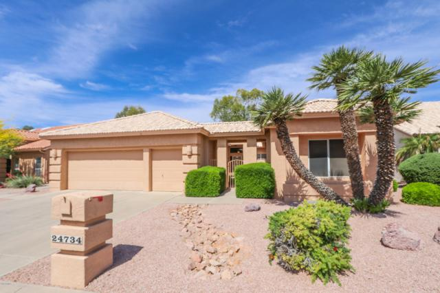 24734 S Stoney Lake Drive, Sun Lakes, AZ 85248 (MLS #5915707) :: Devor Real Estate Associates