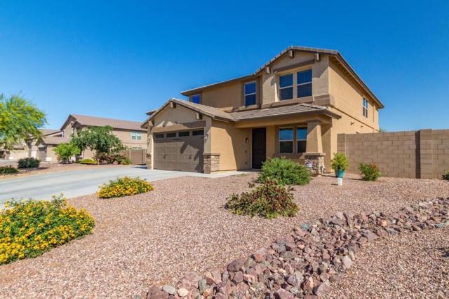 3904 W Paradise Lane, Phoenix, AZ 85053 (MLS #5915709) :: The Pete Dijkstra Team