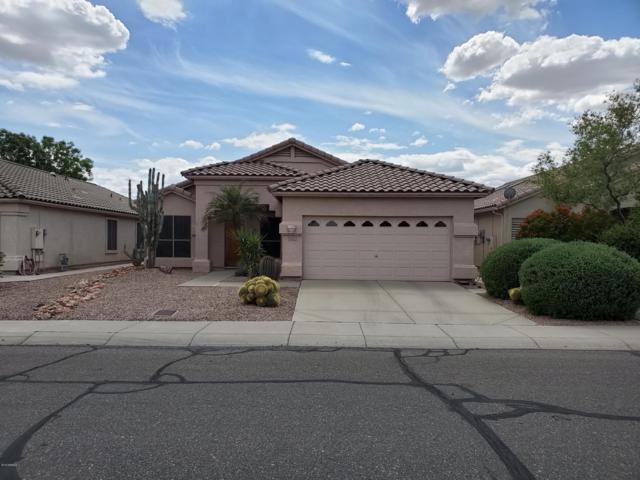 6649 W Rose Garden Lane, Glendale, AZ 85308 (MLS #5915712) :: The Results Group
