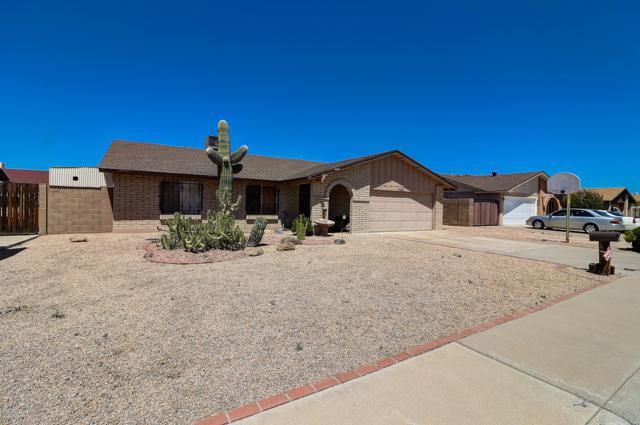 3940 W Windrose Drive, Phoenix, AZ 85029 (MLS #5915728) :: The Pete Dijkstra Team