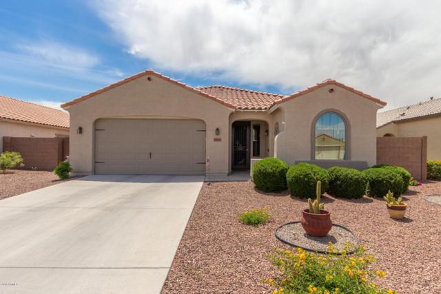 18631 W Vogel Avenue, Goodyear, AZ 85338 (MLS #5915740) :: Occasio Realty