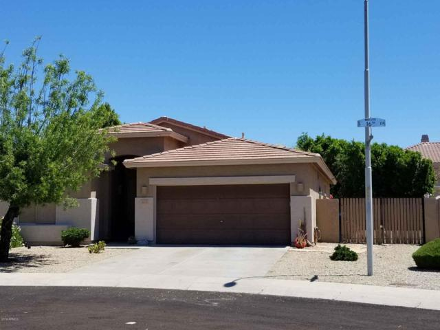 16633 S 16TH Drive, Phoenix, AZ 85045 (MLS #5915743) :: The Pete Dijkstra Team