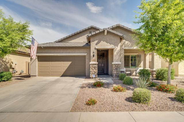 11052 E Tumbleweed Avenue, Mesa, AZ 85212 (MLS #5915750) :: The C4 Group