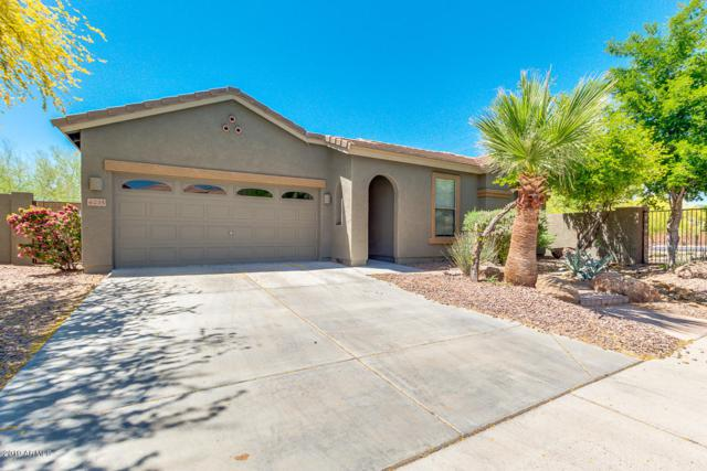 6235 W Molly Drive, Phoenix, AZ 85083 (MLS #5915754) :: The Pete Dijkstra Team
