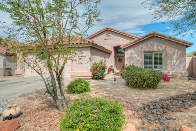 4518 E Thorn Tree Drive, Cave Creek, AZ 85331 (MLS #5915762) :: Riddle Realty