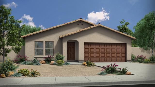 1636 E Silver Reef Drive, Casa Grande, AZ 85122 (MLS #5915763) :: The Daniel Montez Real Estate Group