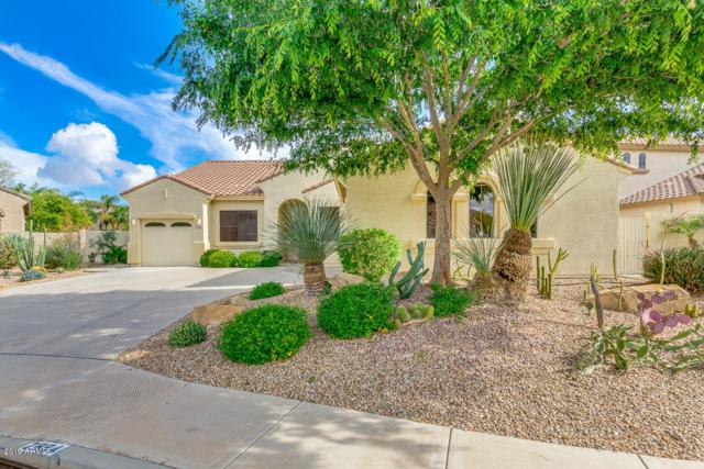 2894 E Westchester Drive, Chandler, AZ 85249 (MLS #5915767) :: Occasio Realty